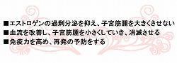nakamura06.jpg